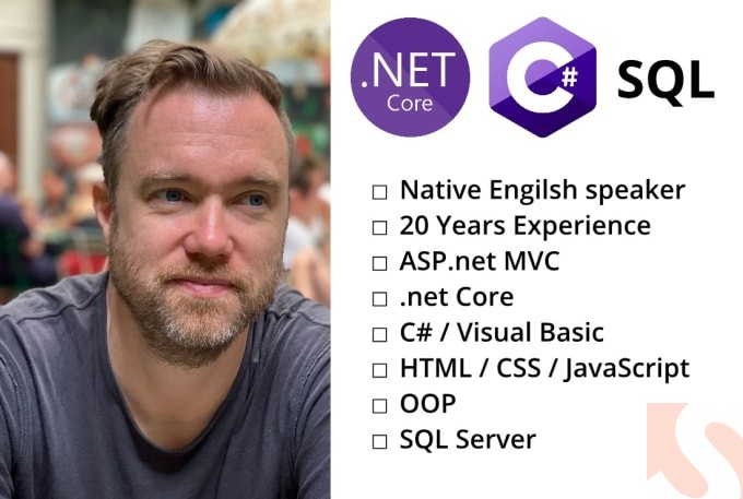 I will develop an aspnet mvc, dot net core or web forms webapp
