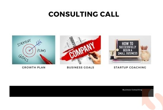 I will do a business plan or business consulting