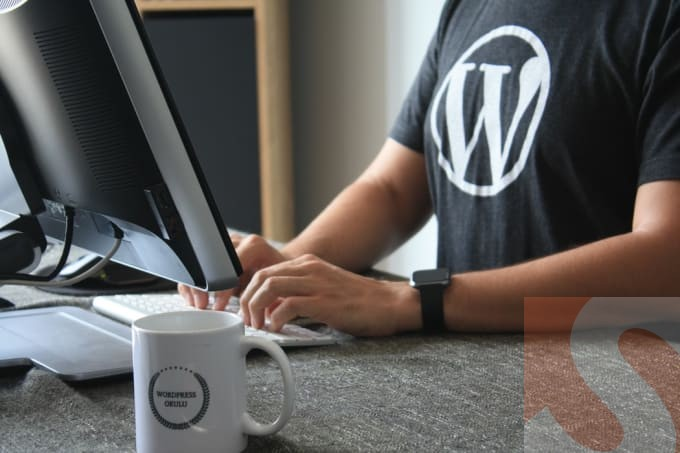 I will teach you wordpress, one to one